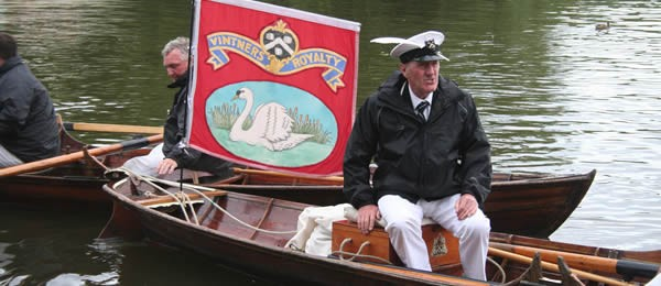 Swan Upping on the Thames near Mouslford